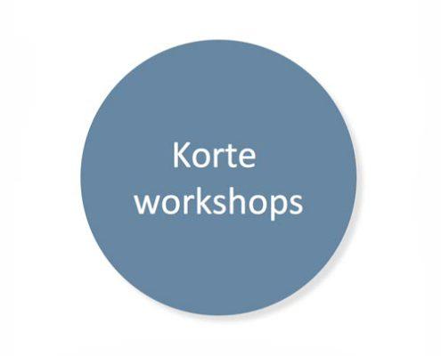 Leiderschapsontwikkeling - Korte workshops